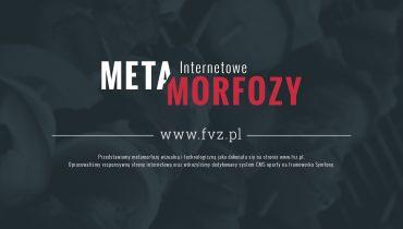 Metamorfoza strony fvz.pl